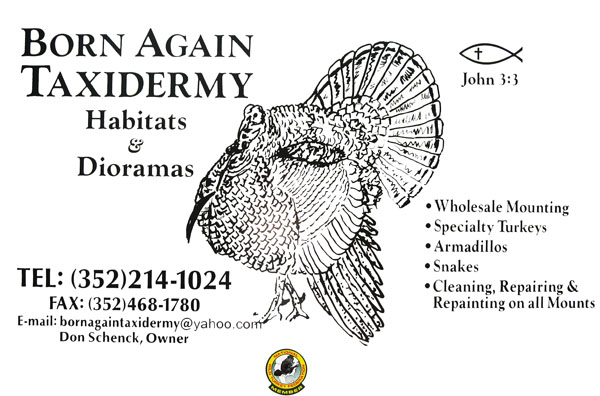 Born Again Taxidermy Logo